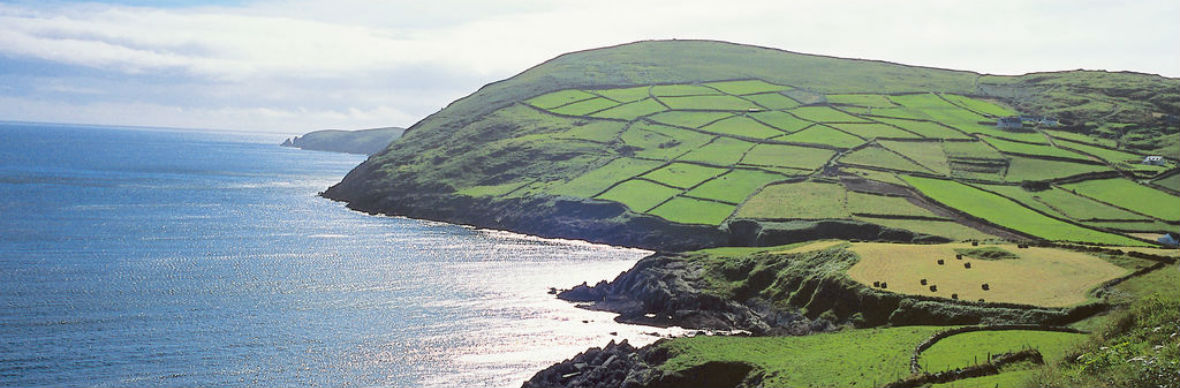 "<span id=""info"">Discover Ireland</span>"