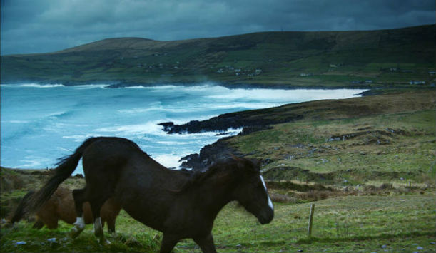 Le Wild Atlantic Way