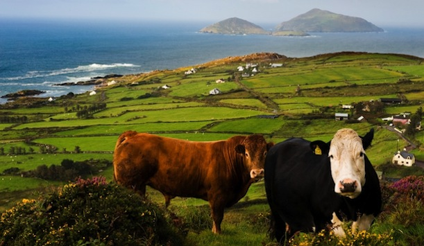 Coastal view in County Kerry