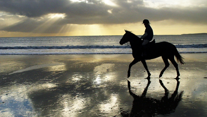 Horseriding on Laytown Strand