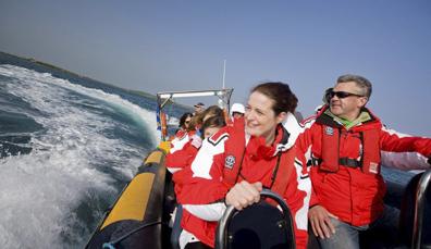 Safari marino a Strangford Lough