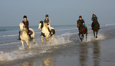 Plages à cheval