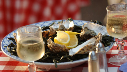 Delicious Galway Oysters
