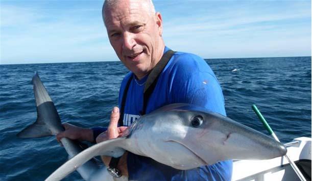 Der Kampf mit dem Blauhai - jetzt wird er wieder in die Freiheit entlassen