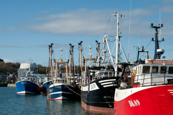 Fishing boats in Howth Harbour
