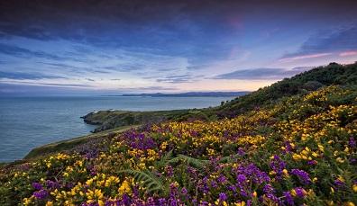 6 wunderschöne Aufnahmen von Irland im Frühling
