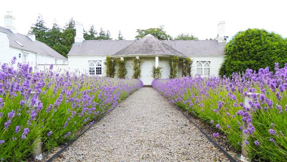 """Gardens at Áras an Uachtaráin zur Verfügung gestellt von <a href=""""http://www.president.ie/media-gallery/photo-gallery/?album=6&gallery=55"""" >Richie McCann</a>"""