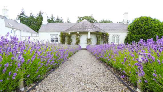 "Gardens at Áras an Uachtaráin fourni par <a href=""http://www.president.ie/media-gallery/photo-gallery/?album=6&gallery=55"" >Richie McCann</a>"