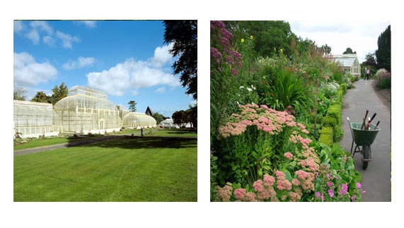 The National Botanic Gardens, Dublin city