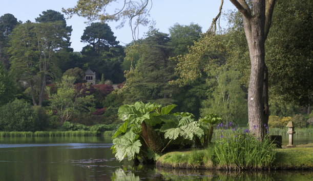 "Mount Stewart Garden, County Down provided by <a href=""http://www.richardjohnstonphotographer.ie/"" >Richard Johnston</a>"