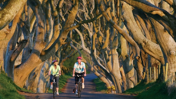 The Dark Hedges, County Antrim