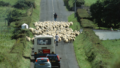 Road Obstructions in Ireland