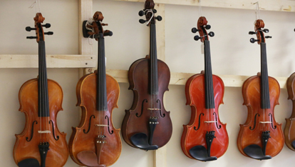 So many fiddles