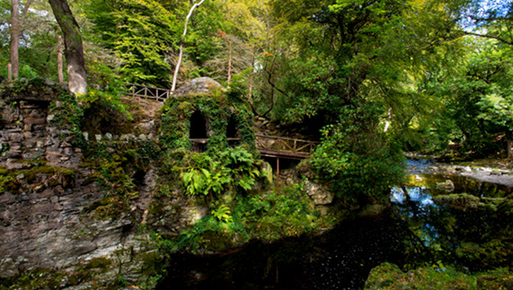Tollymore Forest Park, County Down