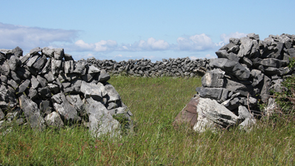 Stone fields in Inis Mór