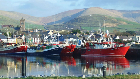 Dingle Harbour, County Kerry