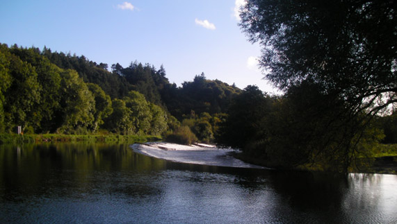 "A perfect day on the River Barrow provided by <a href=""http://gowiththeflow.ie/"" >Go With the Flow</a>"
