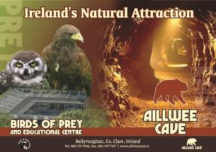 Unique Guided Tour and Hawk Walk at Aillwee Cave and Birds of Prey Centre for 80 per person