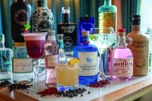 Stylish Galway Escape with Gin Tasting