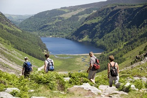 Guided Walks in Wicklow for 38pp
