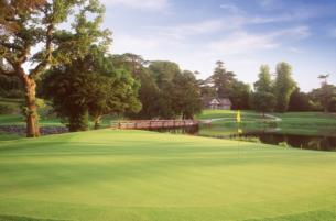 2 BB  2 Rounds of Golf at Carton House  40  Credit  300 per person sharing