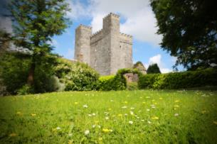 One Night BB with Dinner in a 13th Century Castle near Dublin
