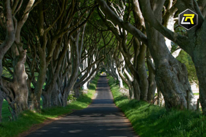 10 day 11 night Game of Thrones and Wild Atlantic Way Motorcycle Tour of Ireland