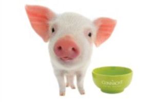 Make a Pig of Yourself - FREE Breakfast this November