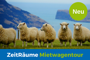 ZeitRume Reisen  Mietwagen  Ferienhause Rundreise  Meet the Sheep