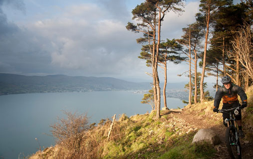 Rostrevor Mountain Bike Trail