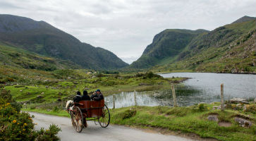 A week in Killarney