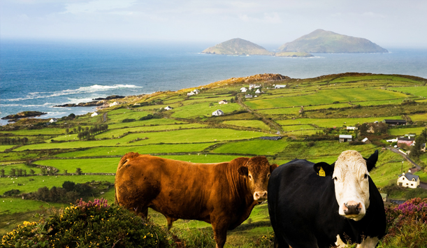 Ring of Kerry, Derrynane Bay