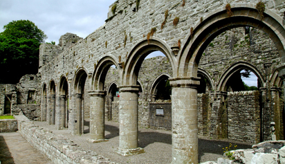 Boyle Abbey, County Roscommon