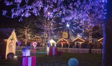 Galway Continental Christmas Market (16 November-22 December)