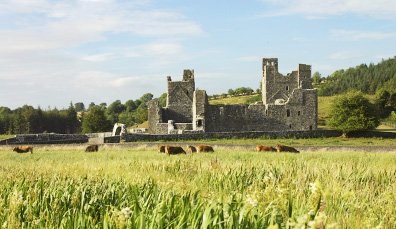 Fore Abbey, County Westmeath
