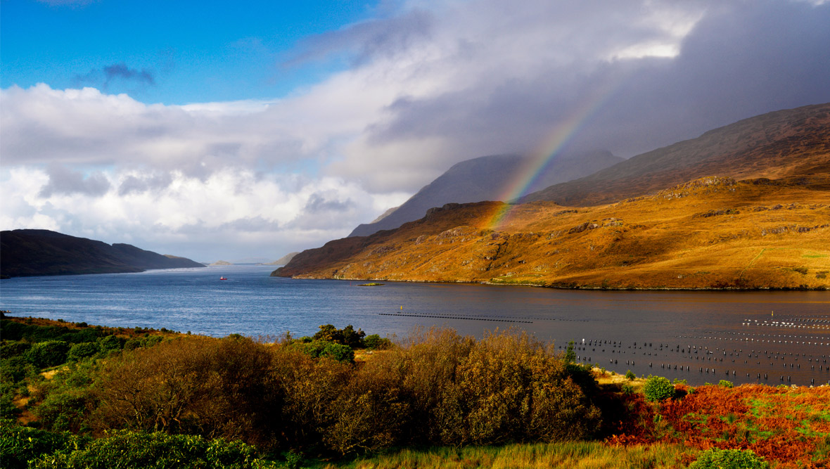 Killary Fjord, County Mayo