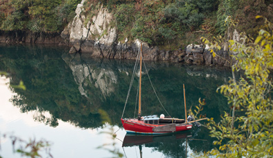 L'attrait de Lough Hyne