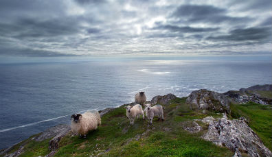 Anillo De Kerry Mapa.Ideas Para Tu Viaje Anillo De Kerry Ireland Com