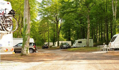 Curraghchase Caravan & Camp Site, Co. Limerick
