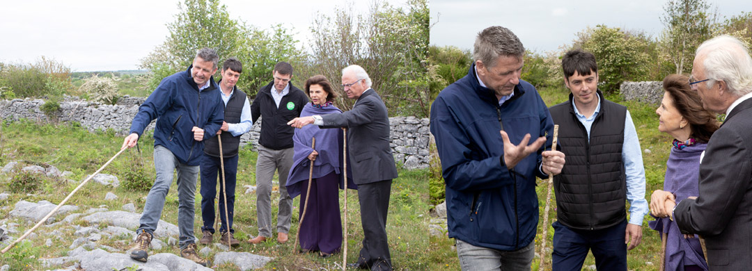 Their Majesties the King and Queen of Sweden visiting a Burren Farm