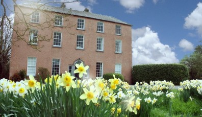 Dollardstown B&B in county Kildare