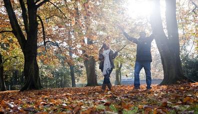 Den Herbst in Irland fotografieren