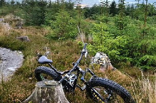 Fatbike Strand Fahrradtour ab 50 in Wicklow  Djouce Woods  Forest  Mountain Tour