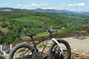 Fatbike Strand Fahrradtour ab 50 in Wicklow  RedcrossAvoca  Forest  Brewery Tour