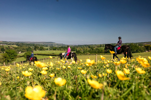 Giddy up and escape the hustle and bustle on an overnight horseback riding adventure with White Horse Hotel for 132.50 pp
