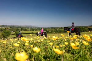 Connect with the Wild on Foot  Horseback with a twoday guided adventure with the White Horse Hotel for 269 pp