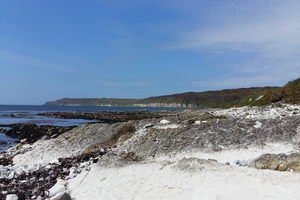 Tour Rathlin Island on a relaxed easy walk with Rathlin Walking Tours for 8 pp
