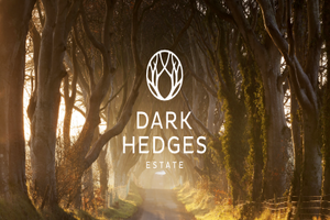 Spend 2 nights BB in Game of Thrones territory at Dark Hedges Estate Ballymoney from 199 per couple