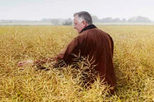 See what happens on the farm with Broighter Gold Rapeseed Oil Tours Limavady Co Londonderry for 20 pp