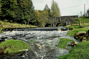 Trout Tours NI Bronze Package  3 Day Game Fishing Break for 299 pppn